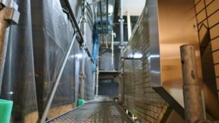 有限会社ダイエー塗装の高圧洗浄作業についての画像